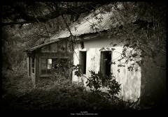 снится заброшенный дом