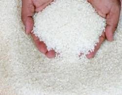 снится рис